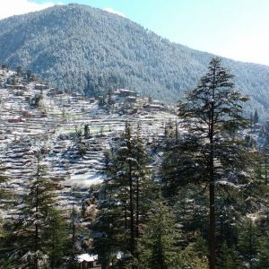 Himachal Hills Offer Energizing Break from Heat Wave